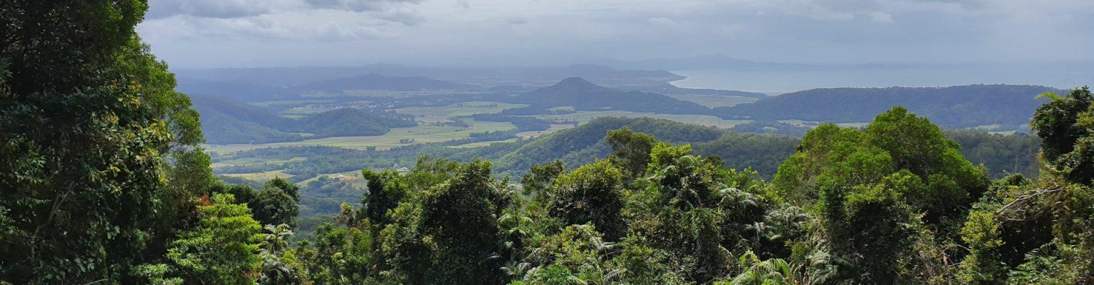 Mossman Mt Molloy Rd View
