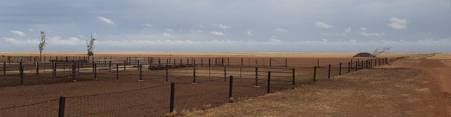Cattle Yards Barkley HW
